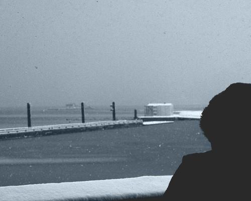 Port Moody Snow, 2016